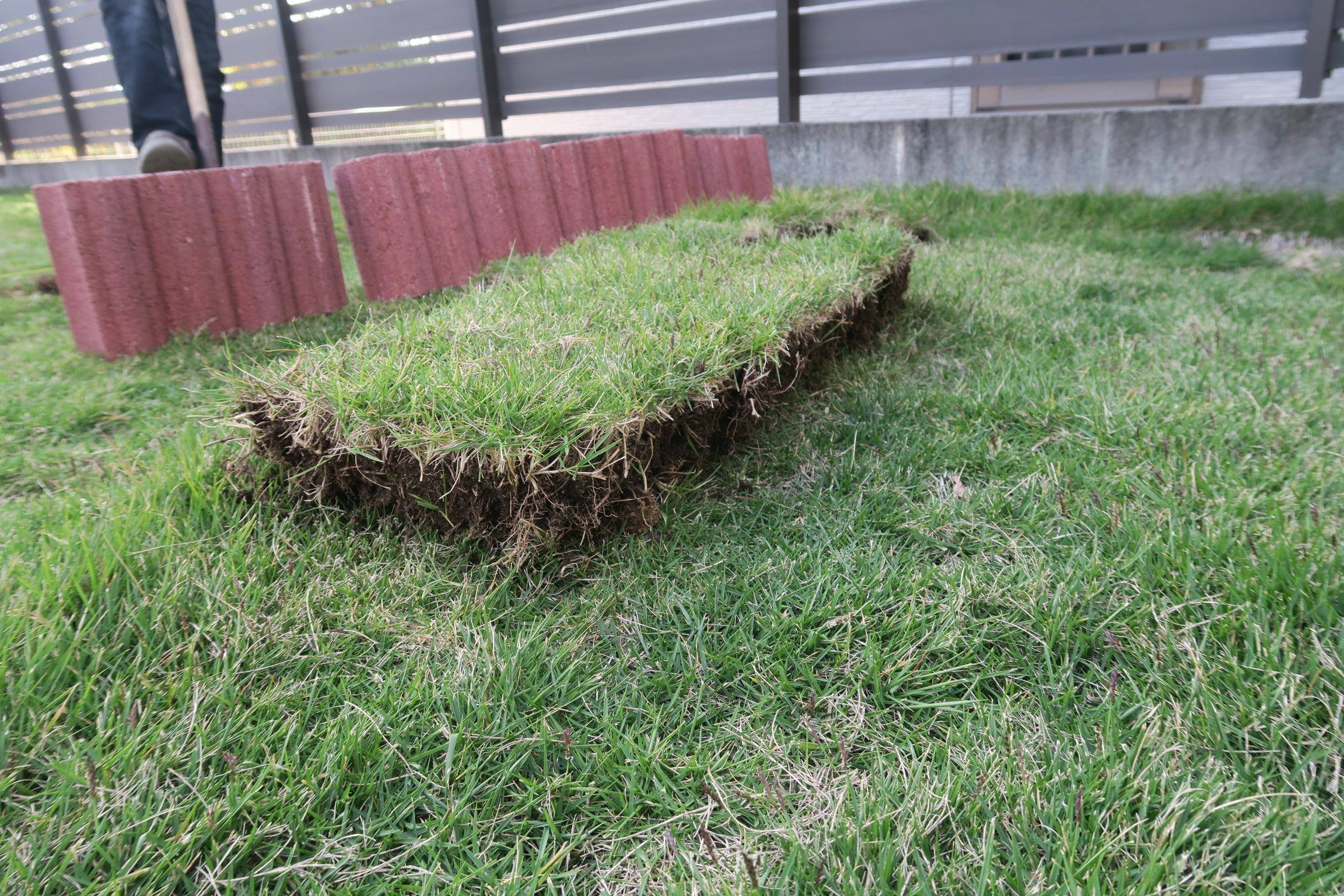 掘り起こした芝生