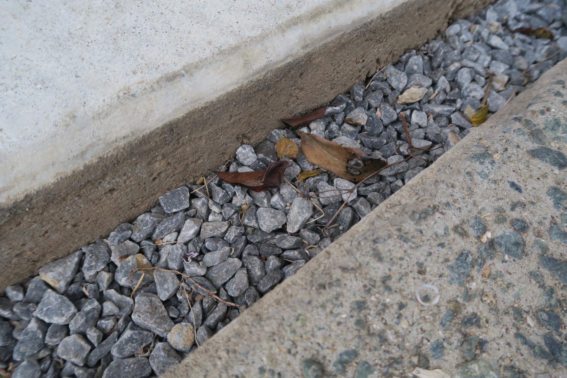 掘った溝にゴミが溜まる